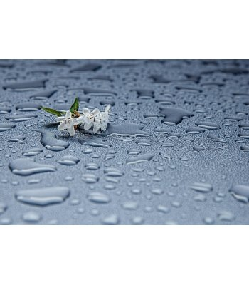 Rainwater by Bulldog Vapor Concentrate